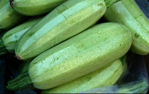 سەي كاۋىسى(菜瓜)